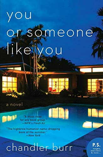 9780061715679: You or Someone Like You: A Novel