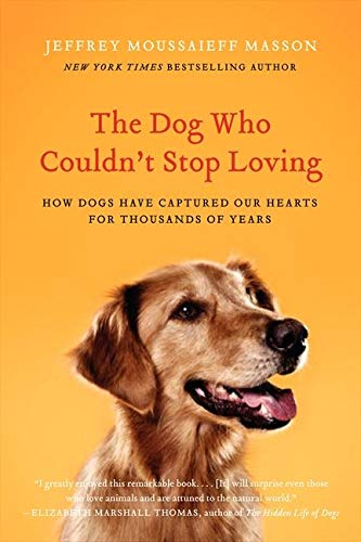 9780061771101: The Dog Who Couldn't Stop Loving: How Dogs Have Captured Our Hearts for Thousands of Years