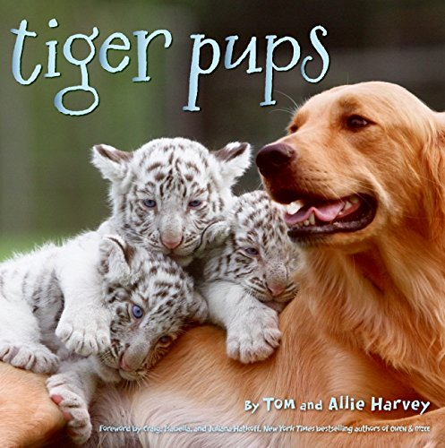 9780061773099: Tiger Pups