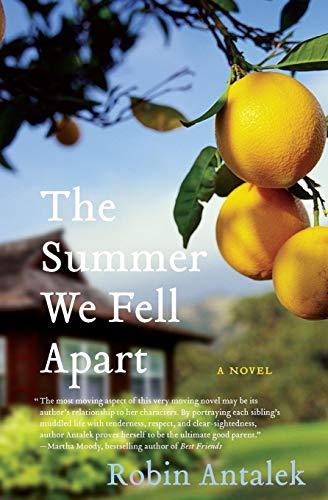 9780061782169: The Summer We Fell Apart: A Novel