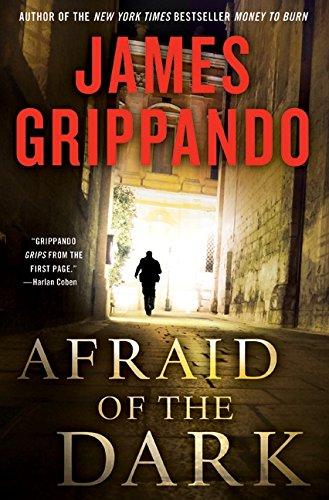 9780061840289: Afraid of the Dark (Jack Swyteck Novel)
