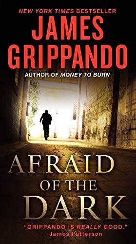 9780061840296: Afraid of the Dark (Jack Swyteck Novel)