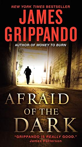 9780061840296: Afraid of the Dark (Jack Swyteck Novel)