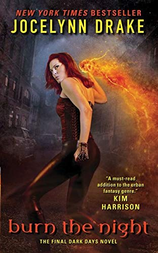 9780061851827: Burn the Night: The Final Dark Days Novel (Dark Days Series)