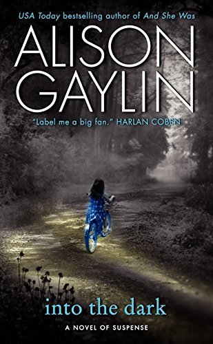 9780061878251: Into the Dark: A Novel of Suspense (Brenna Spector Novel)