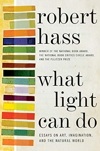 9780061923920: What Light Can Do: Essays on Art, Imagination, and the Natural World