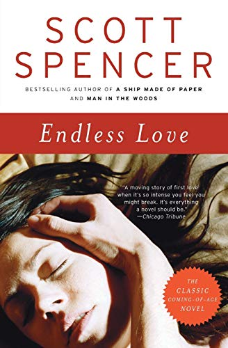 9780061926006: Endless Love: A Novel