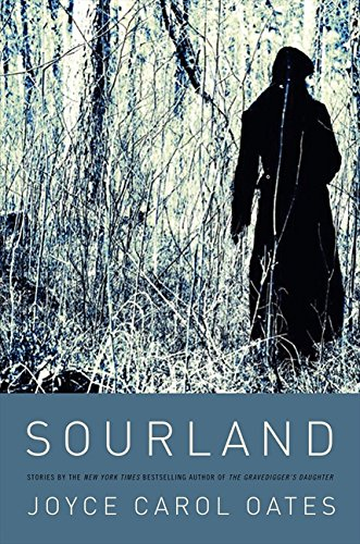 9780061996528: Sourland: Stories