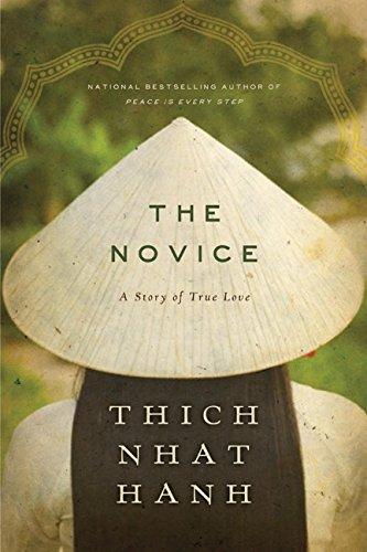 9780062005830: The Novice: A Story of True Love