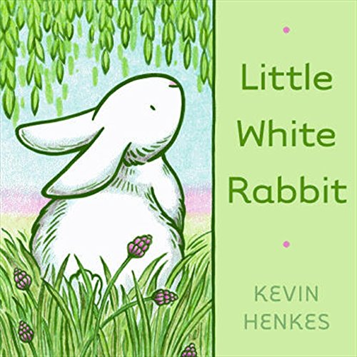 9780062006431: Little White Rabbit