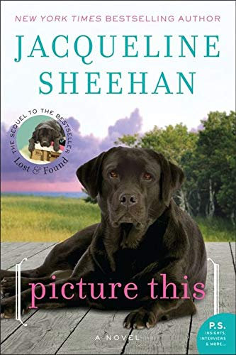 9780062008121: Picture This: A Novel