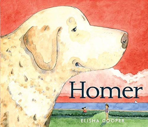9780062012487: Homer