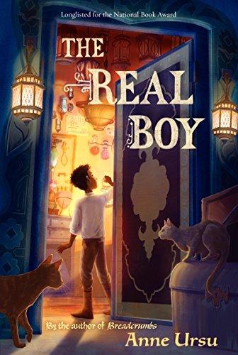 The Real Boy: Ursu, Anne
