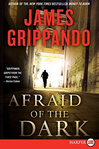 9780062017970: Afraid of the Dark LP: A Novel of Suspense (Jack Swyteck Novel)