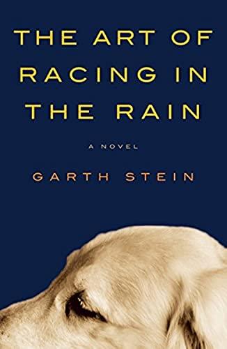 The Art of Racing in the Rain: Garth Stein