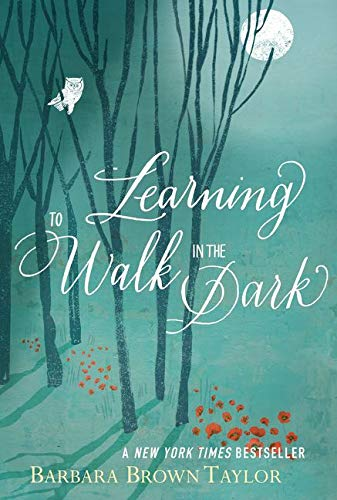 9780062024343: Learning to Walk in the Dark: Because Sometimes God Shows Up at Night