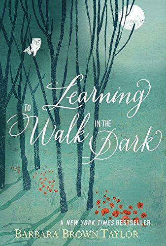 9780062024350: Learning to Walk in the Dark