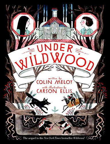 Under Wildwood DOUBLE SIGNED: Meloy, Colin