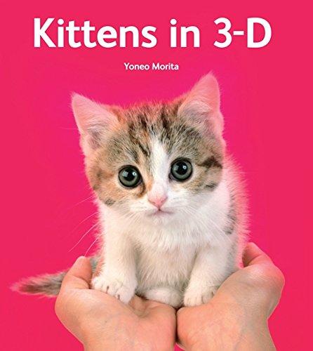 9780062039576: Kittens in 3-D
