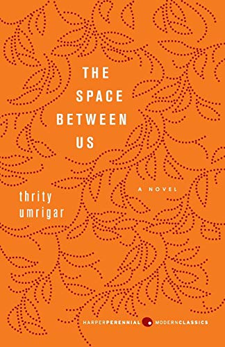 9780062067890: The Space Between Us: A Novel