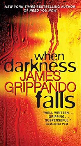 9780062087942: When Darkness Falls (Jack Swyteck Novel)