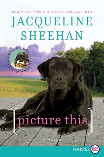 9780062107121: Picture This: A Novel (Peaks Island)