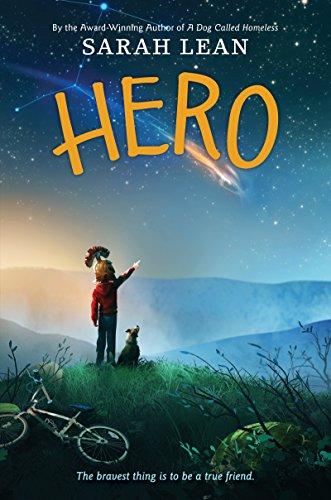 9780062122384: Hero