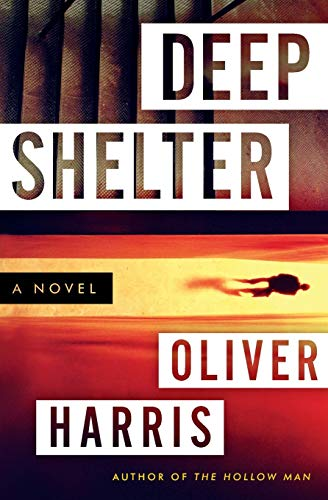 9780062136725: Deep Shelter: A Novel (Detective Nick Belsey Series)