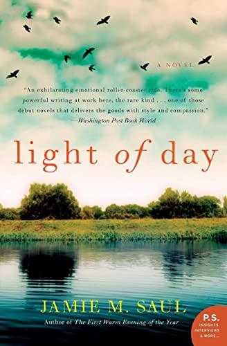 9780062190932: Light of Day: A Novel