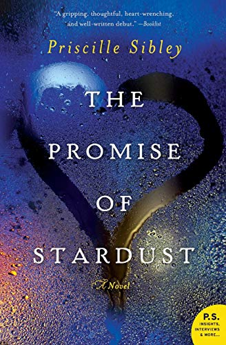 9780062194176: The Promise of Stardust: A Novel
