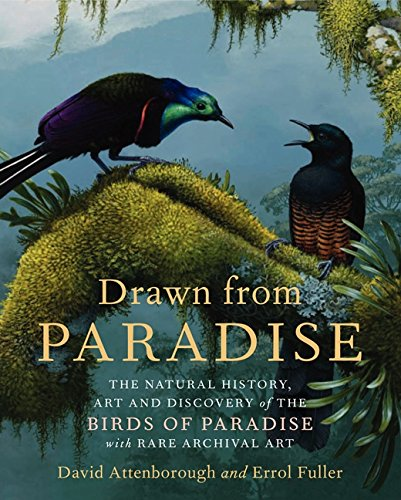 9780062234681: Drawn from Paradise: The Natural History, Art and Discovery of the Birds of Paradise with Rare Archival Art