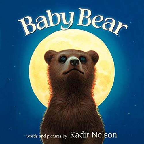 9780062241726: Baby Bear