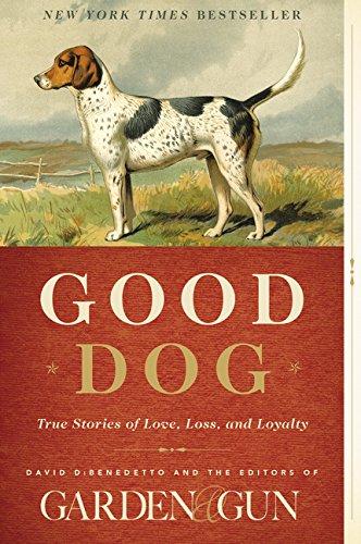 Good Dog: True Stories of Love, Loss, and Loyalty: DiBenedetto, David
