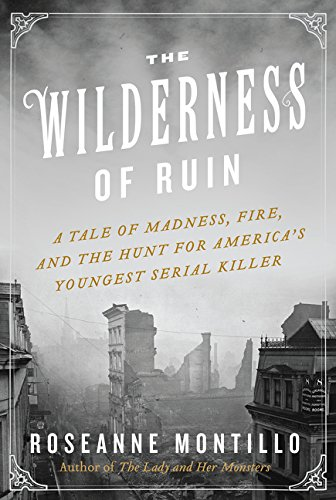 9780062273475: The Wilderness of Ruin: A Tale of Madness, Fire, and the Hunt for America's Youngest Serial Killer