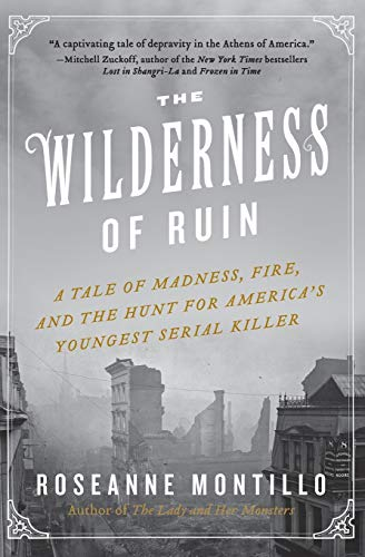 9780062273482: The Wilderness of Ruin: A Tale of Madness, Fire, and the Hunt for America's Youngest Serial Killer