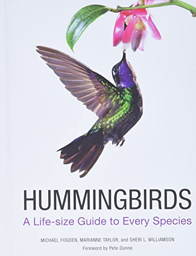 9780062280640: Hummingbirds: A Life-size Guide to Every Species