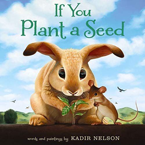 9780062298898: If You Plant a Seed