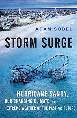 9780062304766: Storm Surge: Hurricane Sandy, Our Changing Climate, and Extreme Weather of the Past and Future