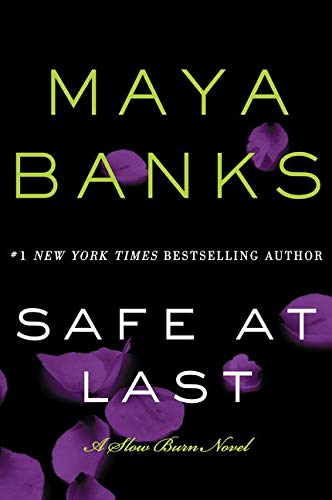 9780062312501: Safe at Last: A Slow Burn Novel (Slow Burn Novels)