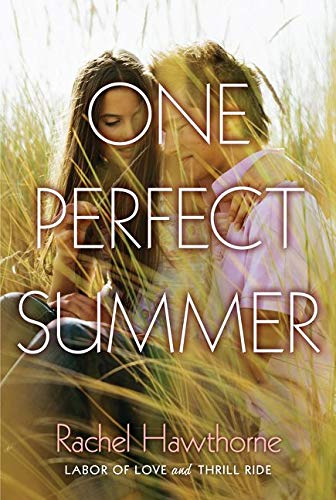 9780062321343: One Perfect Summer: Labor of Love and Thrill Ride