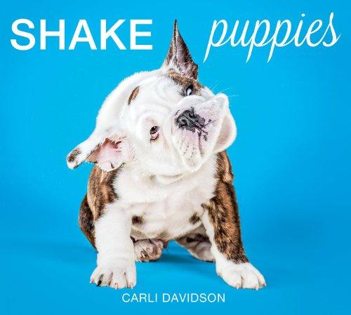9780062351722: Shake Puppies