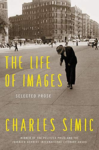 9780062364715: The Life of Images: Selected Prose