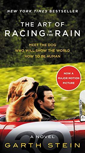 9780062370945: The Art Of Racing In The Rain (film): A Novel