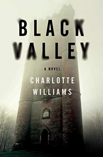 9780062371263: Black Valley: A Novel