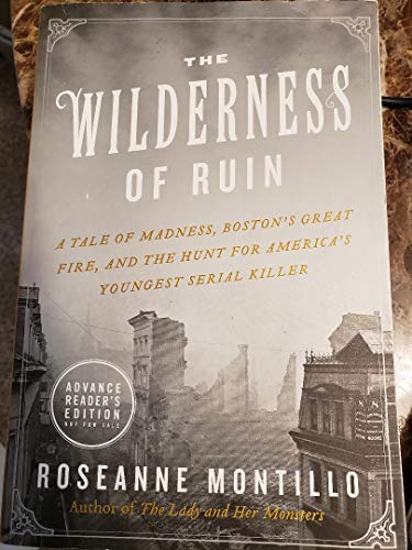9780062390066: The Wilderness of Ruin