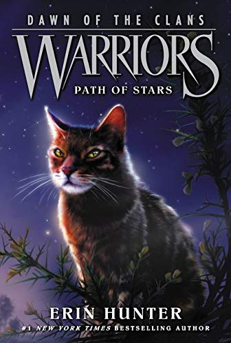 9780062410047: Warriors: Dawn of the Clans #6: Path of Stars