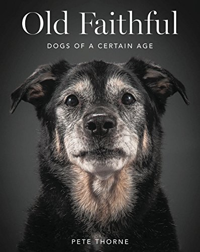 9780062413451: Old Faithful: Dogs of a Certain Age