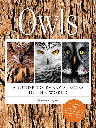 9780062413888: Owls: A Guide to Every Species in the World