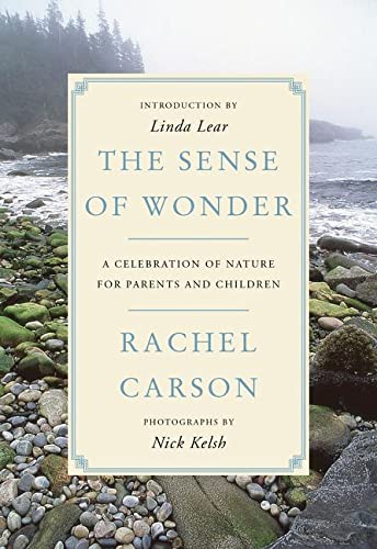 9780062655356: The Sense of Wonder: A Celebration of Nature for Parents and Children