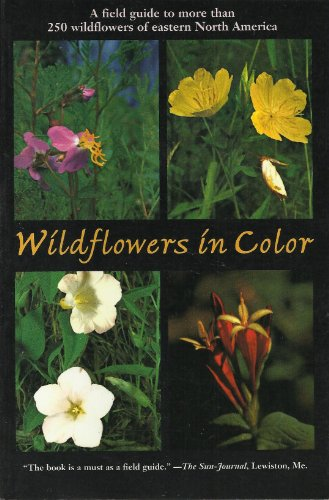 9780062733023: Wildflowers in Color: A Field Guide to More Than 250 Wildflowers of Eastern North America